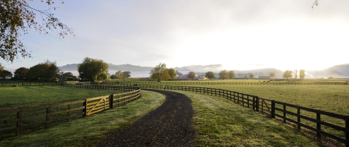 Prepare your farm and family for success